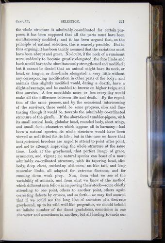 Image of Darwin-F878.2-1868-00221