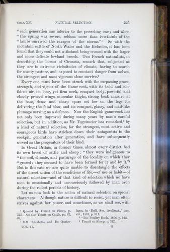 Image of Darwin-F878.2-1868-00225