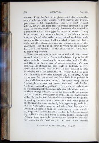 Image of Darwin-F878.2-1868-00226