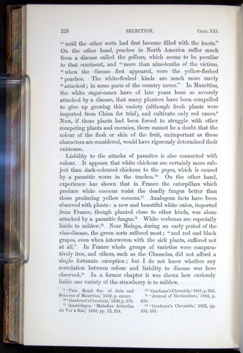 Image of Darwin-F878.2-1868-00228