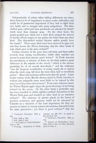 Image of Darwin-F878.2-1868-00231