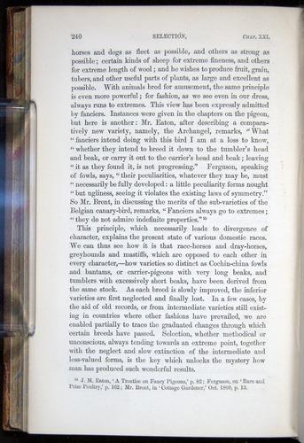 Image of Darwin-F878.2-1868-00240