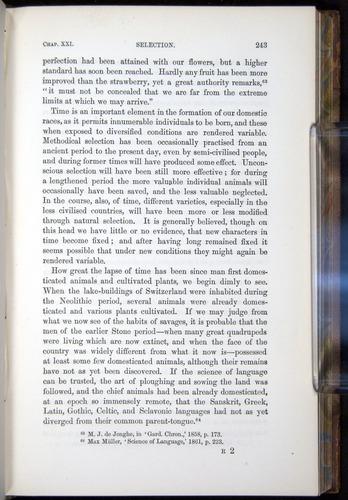 Image of Darwin-F878.2-1868-00243