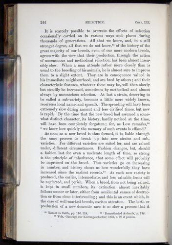Image of Darwin-F878.2-1868-00244