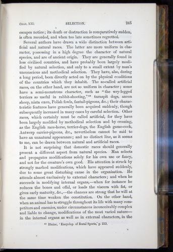 Image of Darwin-F878.2-1868-00245