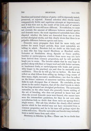 Image of Darwin-F878.2-1868-00246