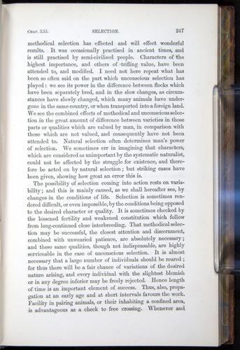 Image of Darwin-F878.2-1868-00247