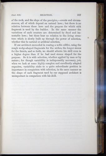 Image of Darwin-F878.2-1868-00249