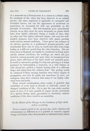 Image of Darwin-F878.2-1868-00255