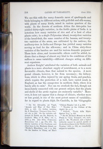 Image of Darwin-F878.2-1868-00256