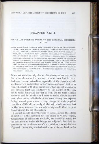 Image of Darwin-F878.2-1868-00271