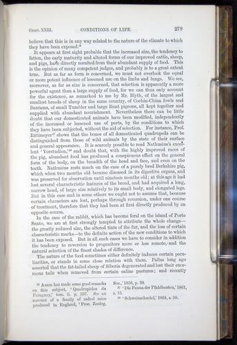 Image of Darwin-F878.2-1868-00279