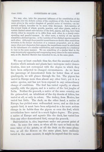 Image of Darwin-F878.2-1868-00287