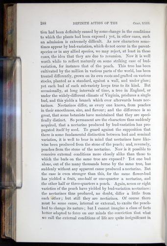 Image of Darwin-F878.2-1868-00288