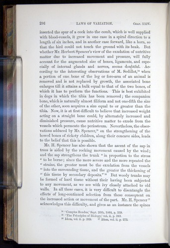 Image of Darwin-F878.2-1868-00296