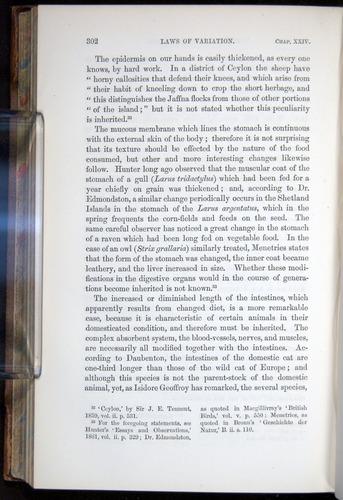 Image of Darwin-F878.2-1868-00302