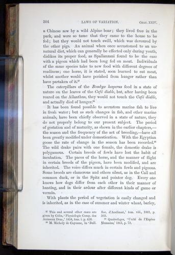 Image of Darwin-F878.2-1868-00304