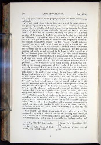 Image of Darwin-F878.2-1868-00316