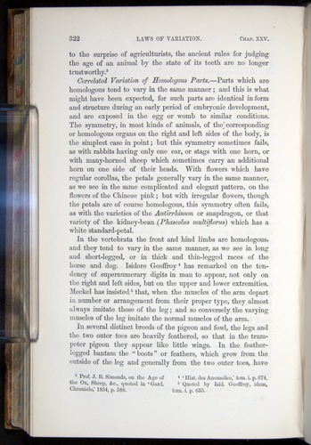 Image of Darwin-F878.2-1868-00322