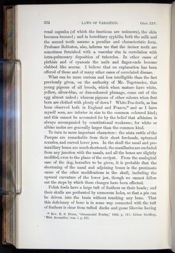 Image of Darwin-F878.2-1868-00332