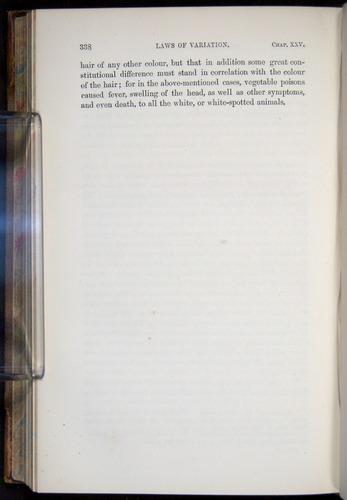 Image of Darwin-F878.2-1868-00338