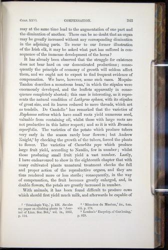 Image of Darwin-F878.2-1868-00343