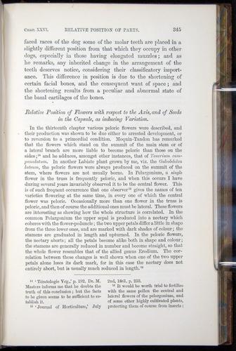 Image of Darwin-F878.2-1868-00345