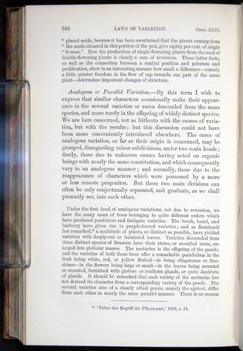 Image of Darwin-F878.2-1868-00348