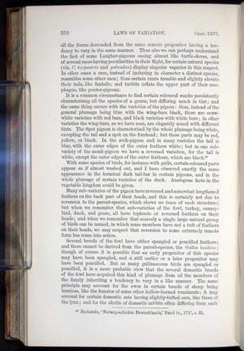 Image of Darwin-F878.2-1868-00350