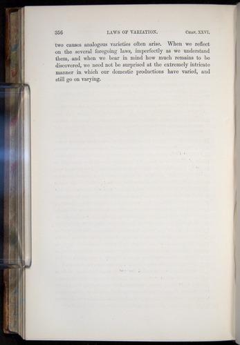 Image of Darwin-F878.2-1868-00356
