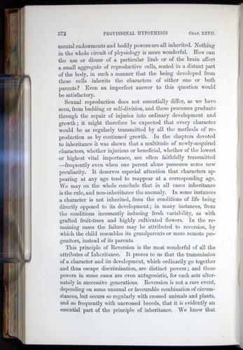 Image of Darwin-F878.2-1868-00372