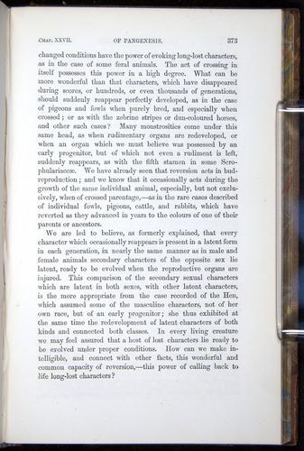 Image of Darwin-F878.2-1868-00373