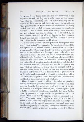 Image of Darwin-F878.2-1868-00382