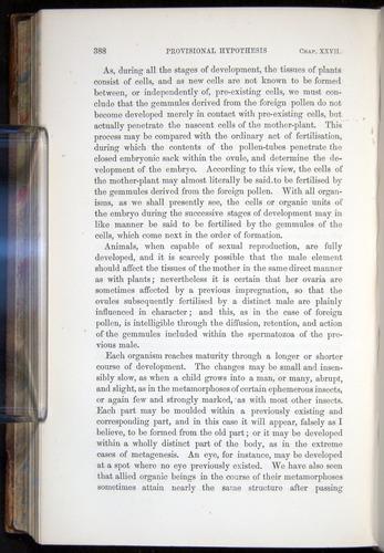 Image of Darwin-F878.2-1868-00388