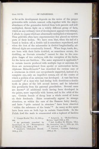 Image of Darwin-F878.2-1868-00391