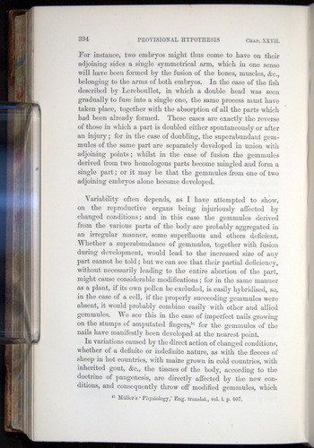 Image of Darwin-F878.2-1868-00394