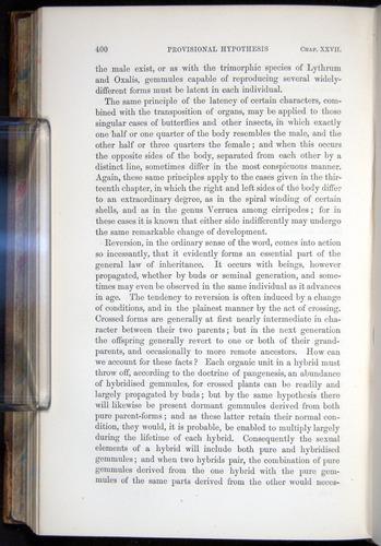 Image of Darwin-F878.2-1868-00400