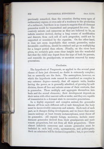 Image of Darwin-F878.2-1868-00402