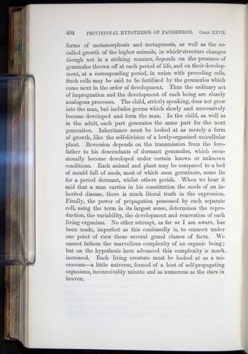 Image of Darwin-F878.2-1868-00404