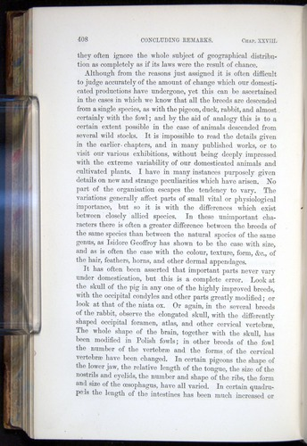 Image of Darwin-F878.2-1868-00408