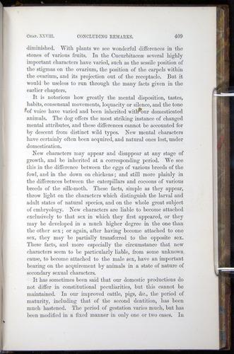 Image of Darwin-F878.2-1868-00409