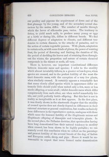 Image of Darwin-F878.2-1868-00410