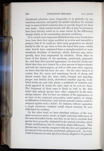 Image of Darwin-F878.2-1868-00414