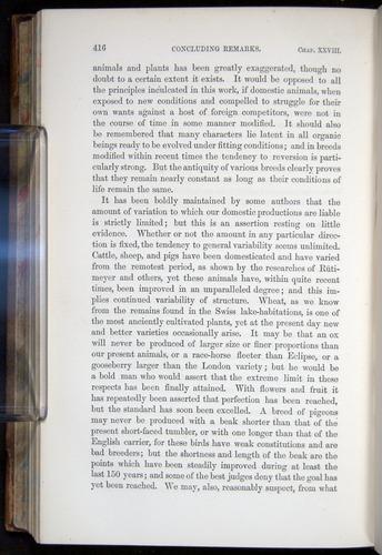 Image of Darwin-F878.2-1868-00416