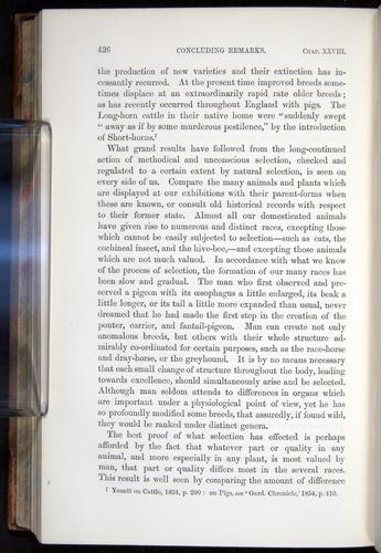 Image of Darwin-F878.2-1868-00426