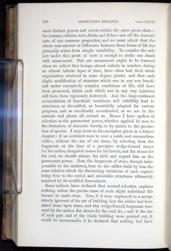Image of Darwin-F878.2-1868-00430