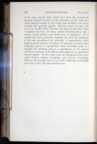 Image of Darwin-F878.2-1868-00432