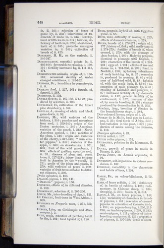 Image of Darwin-F878.2-1868-00448