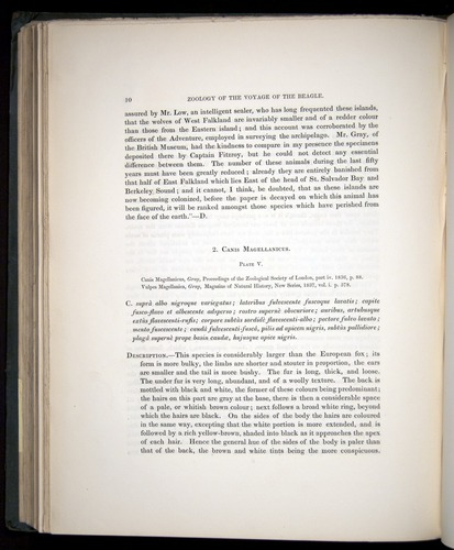 Image of Darwin-F8.1-1838-z0010