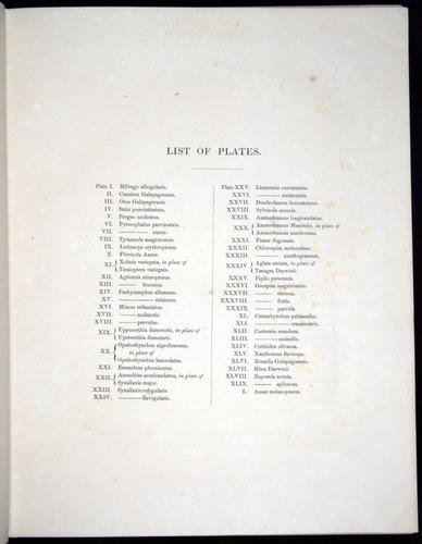 Image of Darwin-F8.2-1838-00000-z05